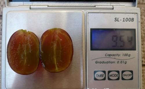 ягоды без семян