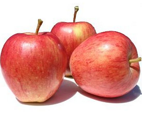 яблоко Зари